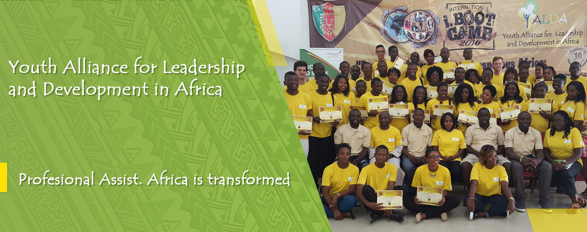 Professional assist Africa is transformed
